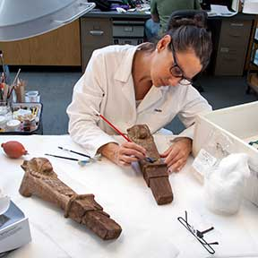 Objects Conservator Paula Artal-Isbrand treating ancient Egyptian artifacts for the exhibition Jewels of the Nile